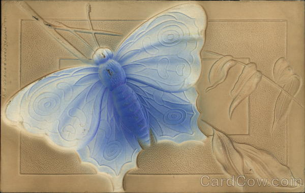 Embossed Image of Large Blue Moth