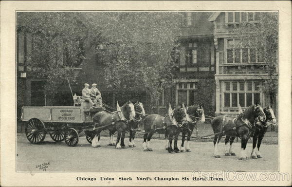 Chicago Union Stock Yard's Champion Six Horse Team