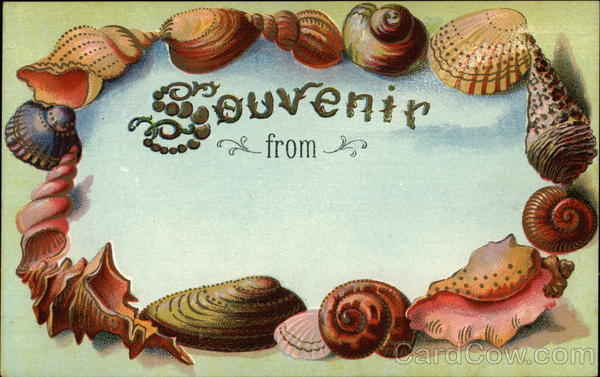 Souvenir From... Framed by Shells Seashells Fancy Borders