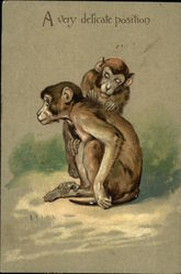 Two monkeys checking each other