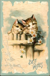 Best Wishes - Two Cats and Daisies