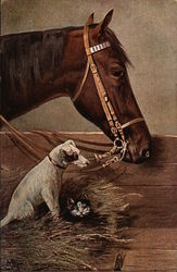 Chestnut Horse, Dog, and Cat Hiding in the Hay