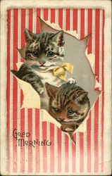 Cats Looking through Torn Paper