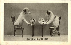 Cat and Dog Playing Cards at Table