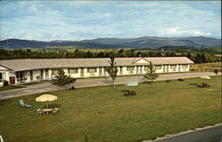 New Haven Motel Postcard