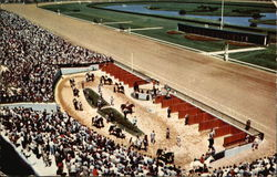 Stadium Type Paddock and Walking Ring at Garden State Park, New Jersey's Pioneer Track