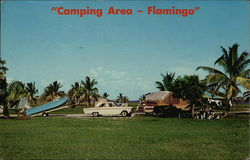 Camping Area - Flamingo