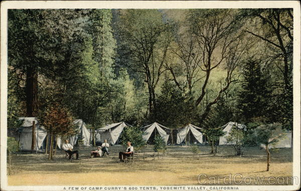 A Few of Camp Curry's 600 Tents, Yosemite Valley, California
