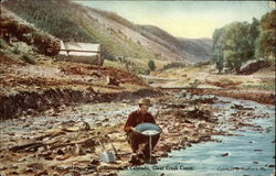 Where gold was first discovered in Colorado