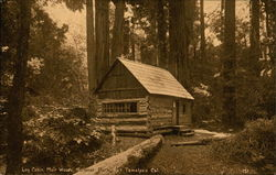 Log Cabin, Muir Woods National Park