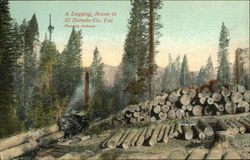 A Logging Scene in El Dorado Co., Cal