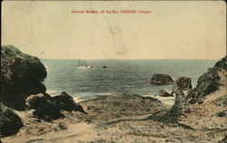 "Steamer ""Bandon"" Off the Bar Postcard"