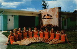 Weeki Wachee Spring of the Mermaids