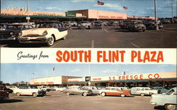 South Flint Plaza