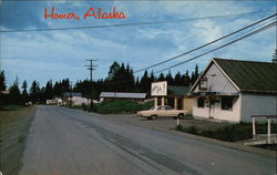 View of Homer Postcard
