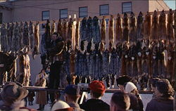 Annual Fur Auction In Anchorage, Alaska