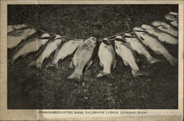 Cobbosseecontee Bass, Balbrook Lodge Litchfield Maine