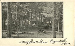 Mayflower Grove