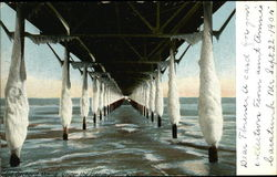 Under the Pier in January