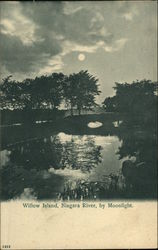 Willow Island, Niagara River by Moonlight Postcard