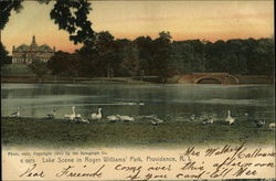Lake Scene at Roger Williams' Park