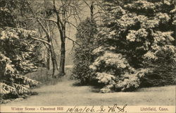 Chestnut Hill - Winter Scene