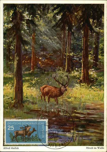 Alfred Mailick- Stag in the forest Maximum Cards Deer