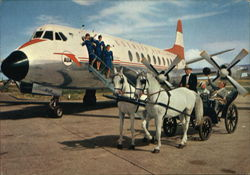 The Friendly Airline and a Horse Cart from Vienna