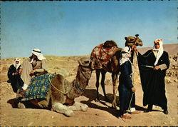 Camel-drivers / Chameliers / Kameltreiber