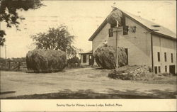 Llewsac Lodge - Storing Hay for Winter