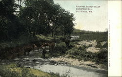 Rountree Branch below Enterprise Mill