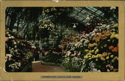 Conservatory, Lincoln Park Postcard