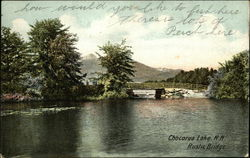 Rustic Bridge, Chocorua Lake
