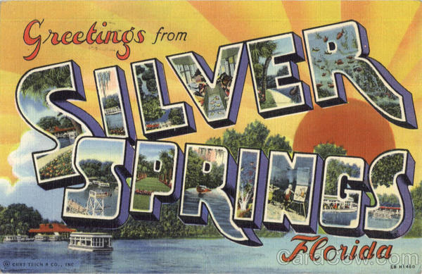 Greetings From Silvers Springs Florida Large Letter