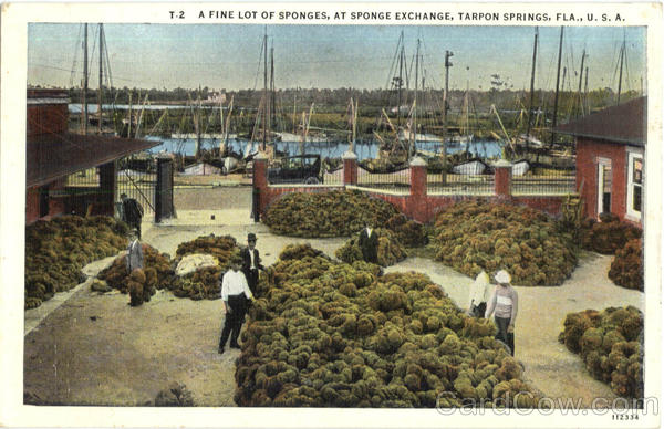 A Fine Lot Of Sponges Tarpon Springs Florida