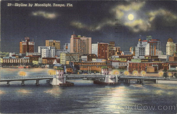 Skyline By Moonlight Tampa Florida