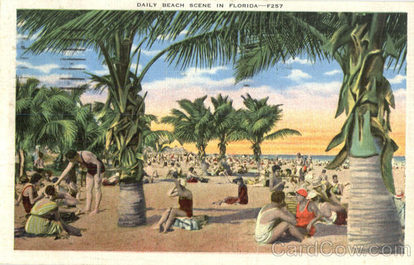 Daily Beach Scene In Florida Scenic