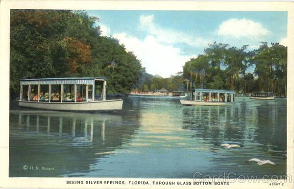 Seeing Silver Springs Florida