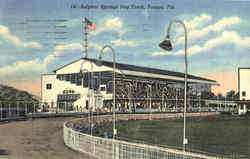 Sulphur Springs Dog Track