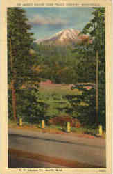 Mount Rainier From Pacific Highway Postcard