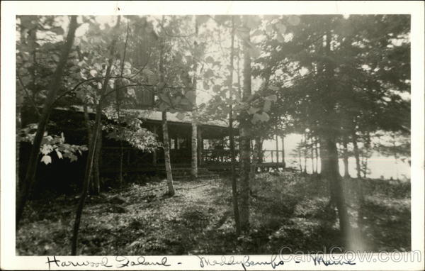 Cabin in Woods Harwood Island Maine
