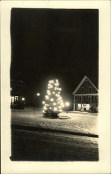 View of Lighted Tree