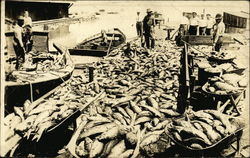 The Last Haul of the 1913 Spring Fishing Season