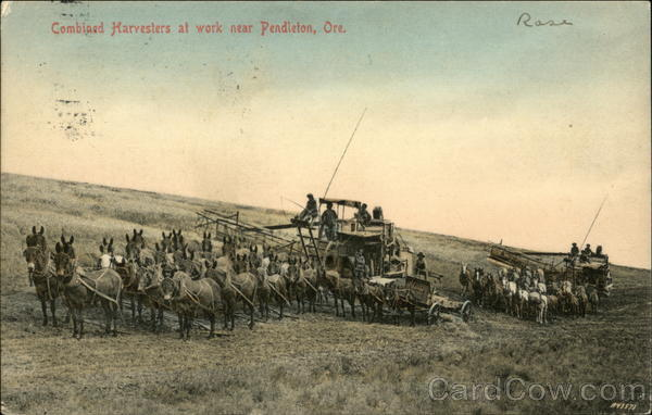 Combined Harvesters at Work near Pendleton Oregon