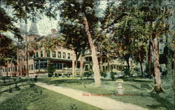 Pine Forest Hotel