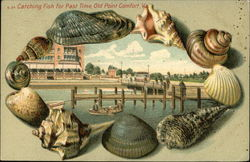Catching Fish for Past Time Postcard