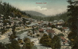 View of Dunsmuir