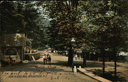View in Ross Park Postcard