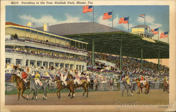Parading to the Post, Hialeah Park Miami Florida Horse Racing