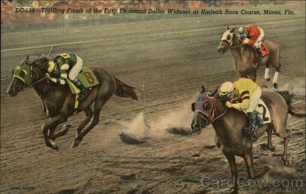 Thrilling Finish of the Fifty Thousand Dollar Widener at Hialeah Race Course Miami Florida